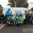 Fighting for a Parvo free Penrith – Over 130 animals vaccinated